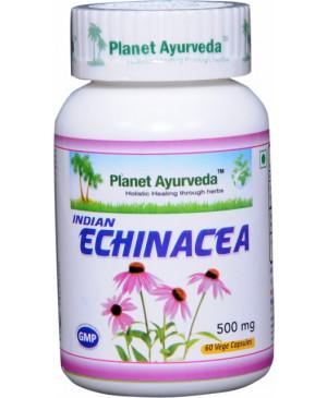 indická echinacea planet ayurveda