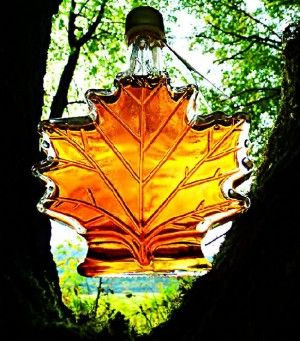 Javorový sirup Medium 250 ml dárková láhev javorový list