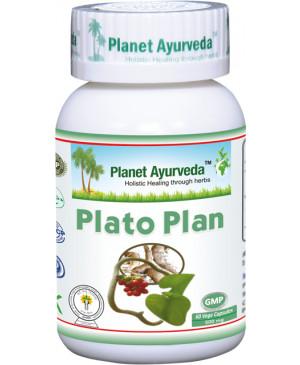 Plato Plan Planet Ayurveda