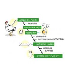 Výrobní postup Pyloxu