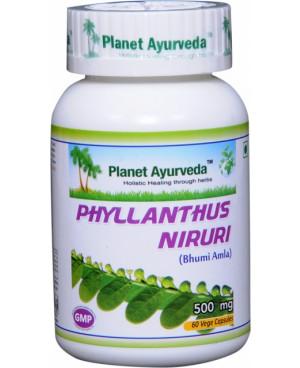 Planet Ayurveda Chanca Piedra extrakt 10:1 500 mg 60 kapslí