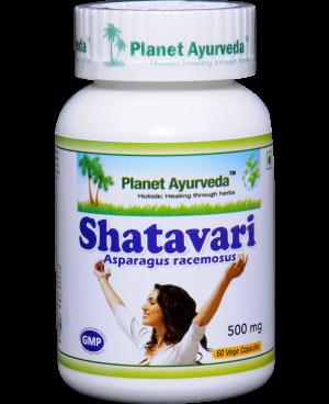 Planet Ayurveda Shatavari extrakt 4:1 500 mg 60 kapslí
